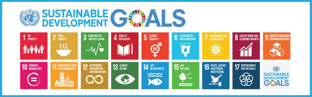 Sustainable Development Goals Logo Banner Web